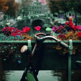Rejsetips: De bedste adresser i Amsterdam