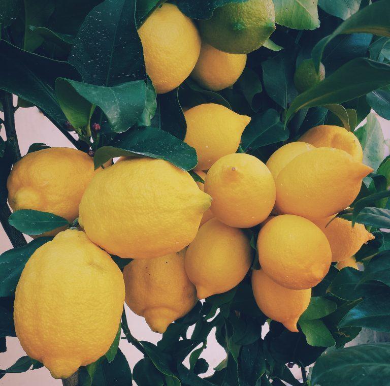 Fruity er det nye sexy