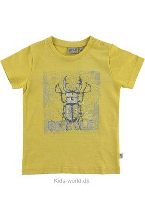 WHEAT T-shirt - Støvet m. Bille