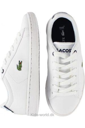 Drenge Pæne sko - Lacoste Sko - /Navy m. Snøre