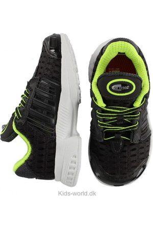adidas Originals Sko - Climacool 1