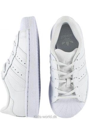 Pæne sko - adidas Originals Sko - Superstar - m. Snøre