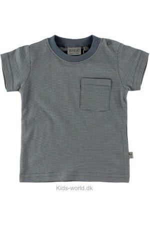 WHEAT T-Shirt - Støvet Blå/Gråstribet
