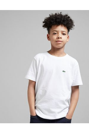 Lacoste Small Logo T-Shirt Junior - Only at JD