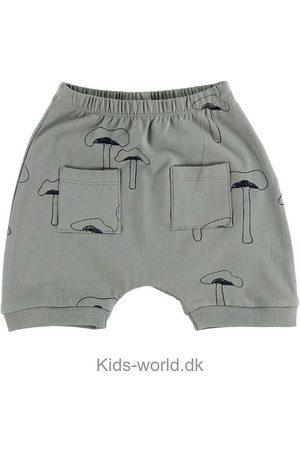Gro Shorts - Drini - Moss Grey