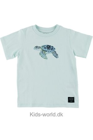 Mini A Ture Kortærmede - T-shirt - Steffen - Blue Skylight m. Skildpadde