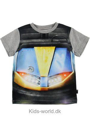 Molo T-shirt - Road - Bumper Car