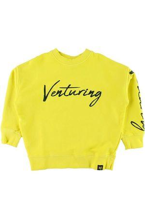 Molo Sweatshirts - Sweatshirt - Max - Lemon