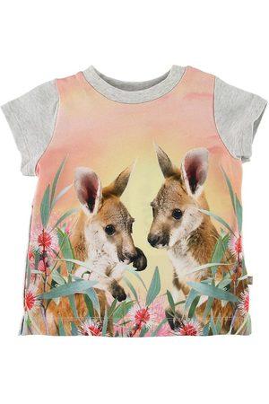 Molo Kortærmede - T-shirt - Elly - Cute Kangaroos
