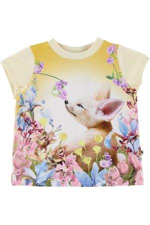 Molo Kortærmede - T-shirt - Elly - Fennec Baby