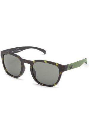 adidas AOR001 Solbriller