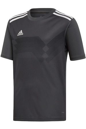 adidas T-shirt - Campeon 19 - /