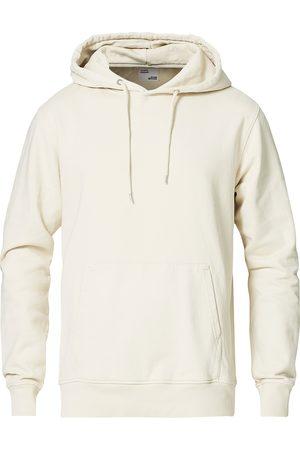 Colorful Standard Classic Organic Hood Iwory White