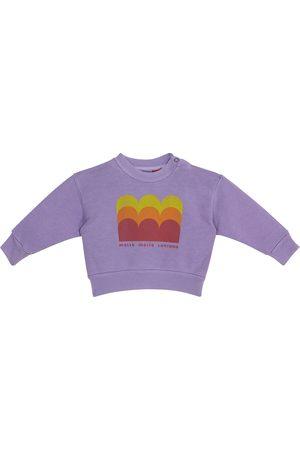 The Animals Observatory Sweatshirts - Baby Bear sweatshirt