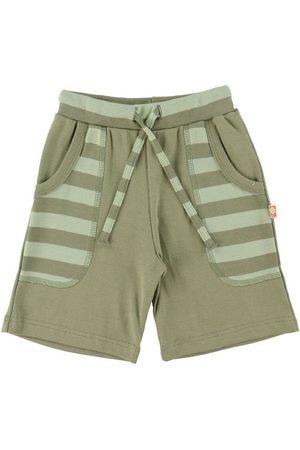 Katvig Shorts - Shorts - Grønstribet