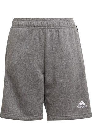 adidas Shorts - Shorts - Tiro 21 - Gråmeleret/