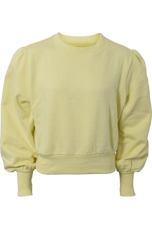 Hound Sweatshirts - Sweatshirt - Warm Yellow