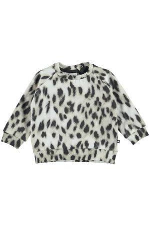 Molo Sweatshirts - Sweatshirt - Disco - Snowy Leo Fur