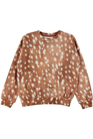 Molo Sweatshirts - Sweatshirt - Maja - Fawn AOP