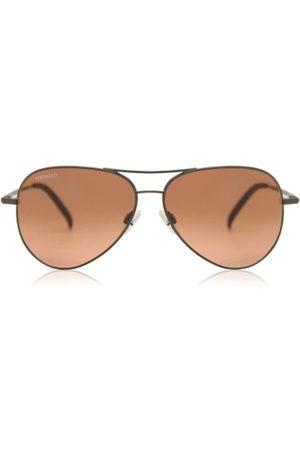 Serengeti Mænd Solbriller - Carrara Solbriller
