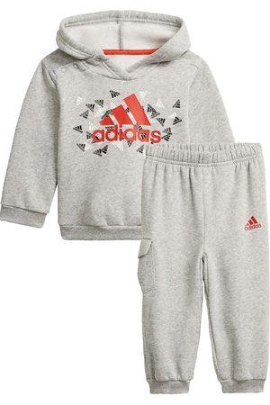 adidas Sweatshirts - Hættetrøjesæt - BOS Graphic - Grå/