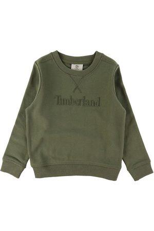 Timberland Sweatshirts - Sweatshirt - Nature Lover - Khaki