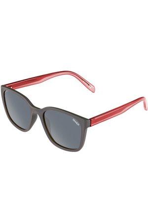 Sinner Brooks SISU-858 Solbriller