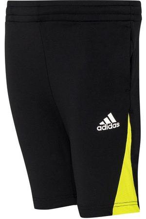 adidas Mænd Shorts - B A.R. PRED SH BLACK/SESOYE