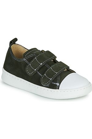 Citrouille et Compagnie Sneakers NADIR