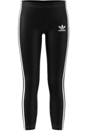 adidas Leggings - Leggings - /