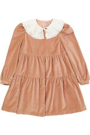 Il Gufo Lace-trimmed velour dress