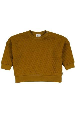 Müsli Sweatshirts - Sewatshirt - Quilt - Pesto