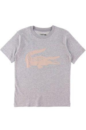 Lacoste Kortærmede - T-Shirt - Gråmeleret